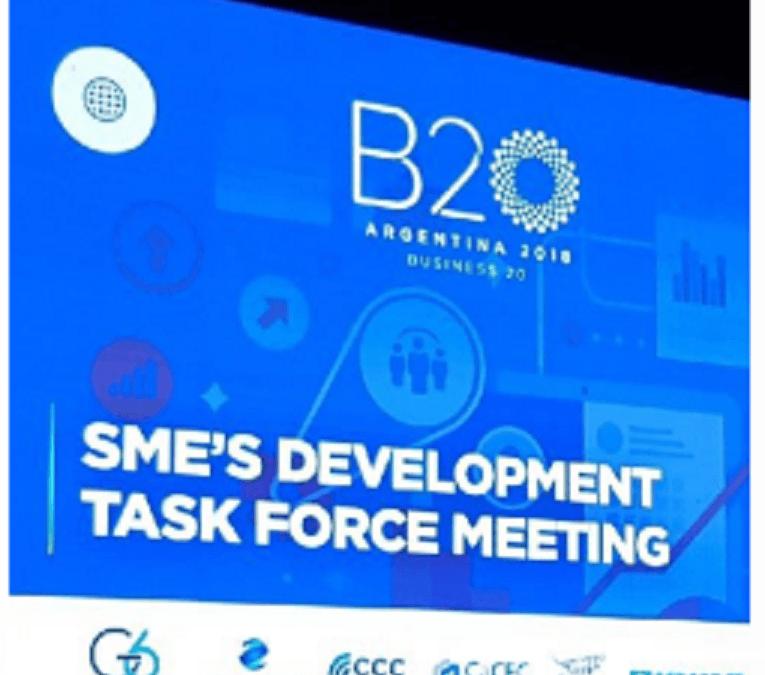B20 SME´s Development Task Force Meeting