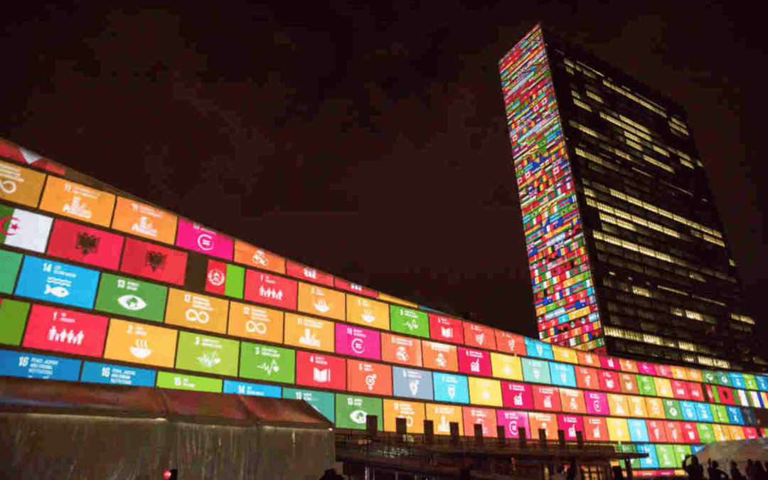 74th Session of the UN General Assembly (UNGA 74)